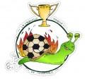 Matchs de foot amicaux
